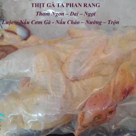 Gà Ta Phan Rang