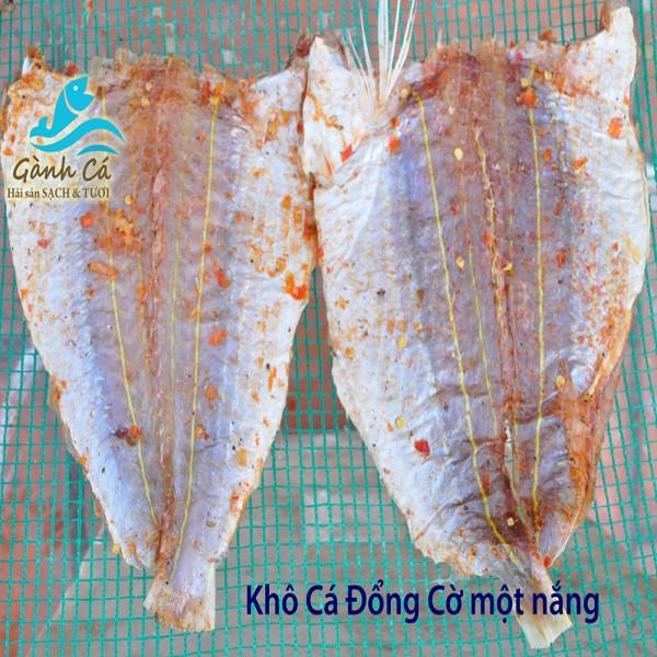 Kho Ca Dong Co